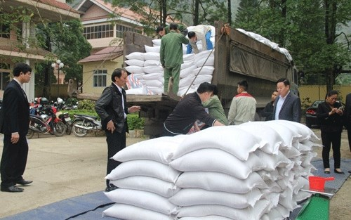 Rice aid reaches over 520,000 impoverished people ahead of Tet hinh anh 1