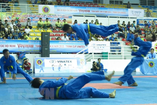 Vietnam's vovinam takes on the world hinh anh 1