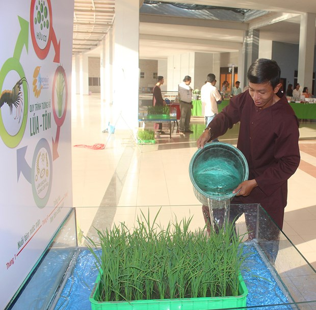 An Giang targets organic agriculture development hinh anh 1
