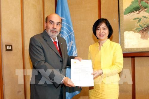 FAO chief lauds Vietnam's development achievements hinh anh 1