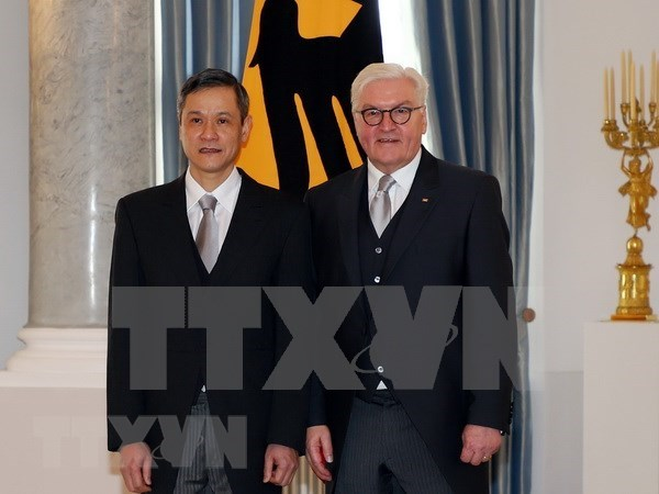Vietnam wishes to enhance ties with Germany: Ambassador hinh anh 1