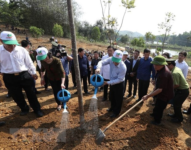 Party, State leader launches Tet tree planting festival in Yen Bai hinh anh 1