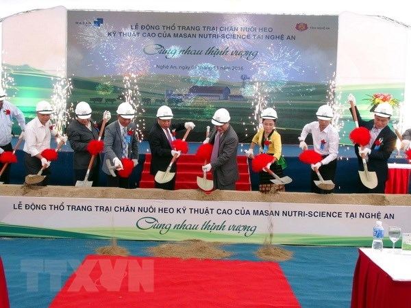 Masan's core profit jumps by 57 percent hinh anh 1