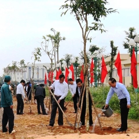 Tree-planting festival greens up localities hinh anh 1