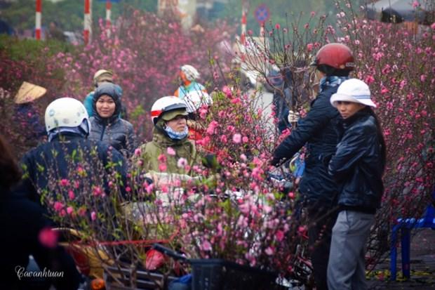 Hanoi flower market among top spots for Lunar New Year celebrations: CNN hinh anh 2