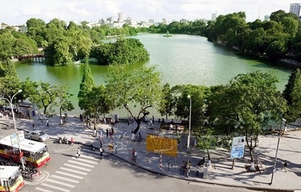 Hanoi plans to grow 400,000 trees in 2019 hinh anh 1