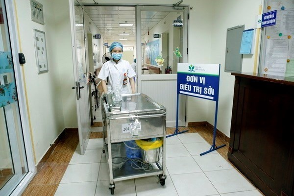 Hanoi records 114 cases of measles so far this year hinh anh 1