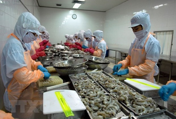 Shrimp exports to RoK expected to rake in 500 million USD hinh anh 1