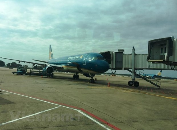 Vietnam Airlines, Jetstar Pacific serve nearly 1.6 million passengers in Tet hinh anh 1