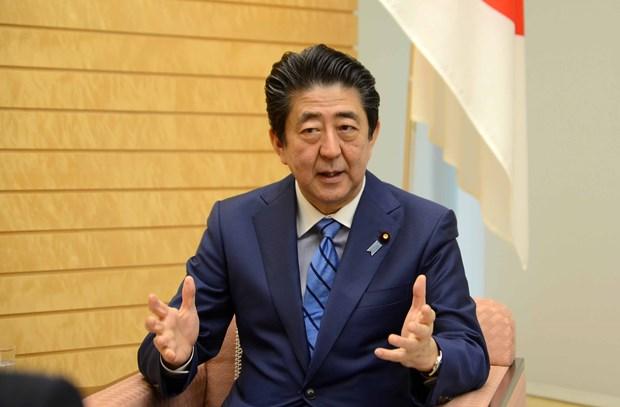 Vietnam-Japan partnership aims to contribute to regional peace, prosperity hinh anh 2