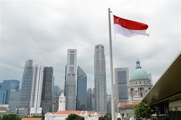 Singapore attracts over 8 bln USD into fixed assets last year hinh anh 1
