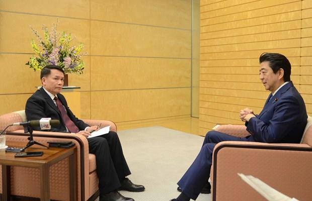 Vietnam-Japan partnership aims to contribute to regional peace, prosperity hinh anh 1