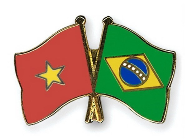 Vietnam strengthens partnership with Brazil hinh anh 1