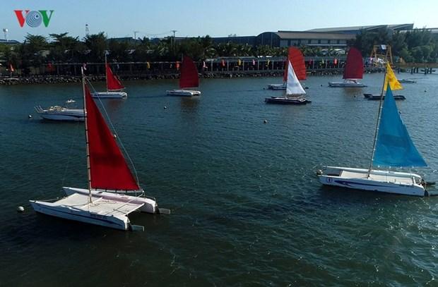 Ba Ria - Vung Tau city hosts sailing race hinh anh 1
