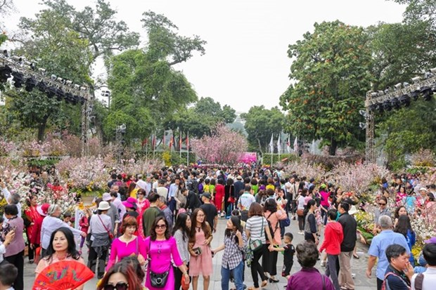 Japanese cherry blossom festival brings global wonders to Hanoi hinh anh 1