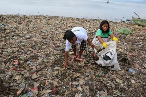 Indonesia: hundreds gather to clean up beach hinh anh 1