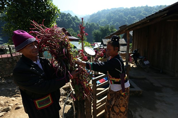 Dien Bien has two more national intangible cultural heritages hinh anh 1