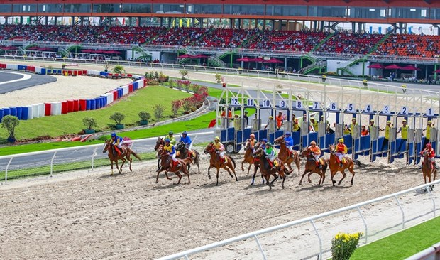 Hanoi authorities to facilitate deployment of horse racetrack project hinh anh 1
