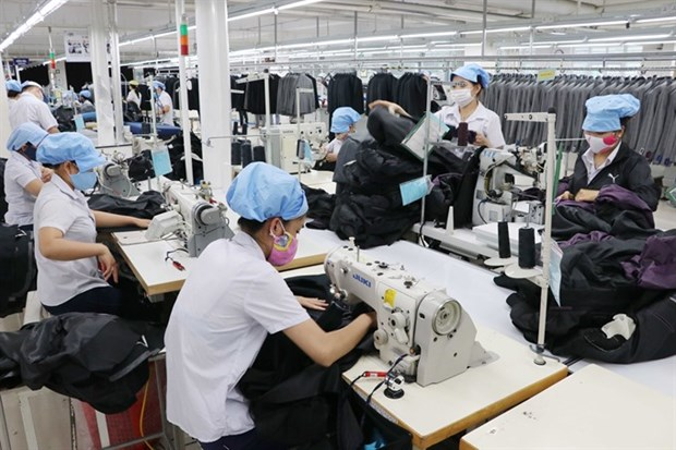 Domestic labour market to hit 56 million in 2019 hinh anh 1
