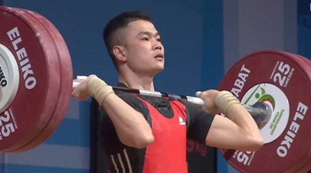 Vietnam bags six golds at world weightlifting event hinh anh 1