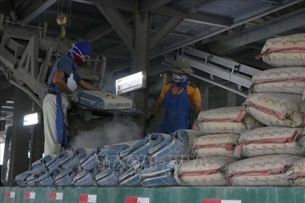 Cement, clinker demand to edge up this year hinh anh 1