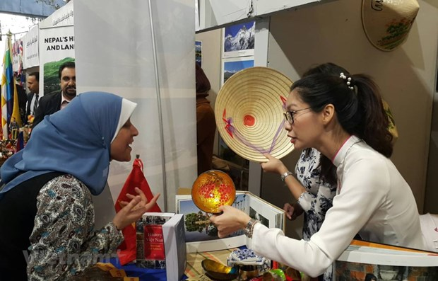 Vietnam leaves strong impression at cultural festival in Egypt hinh anh 1