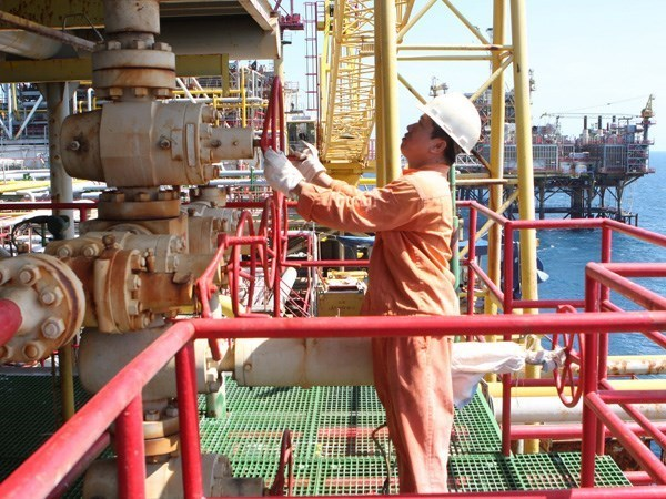Blue Whale gas field project to be launched in Quang Nam hinh anh 1