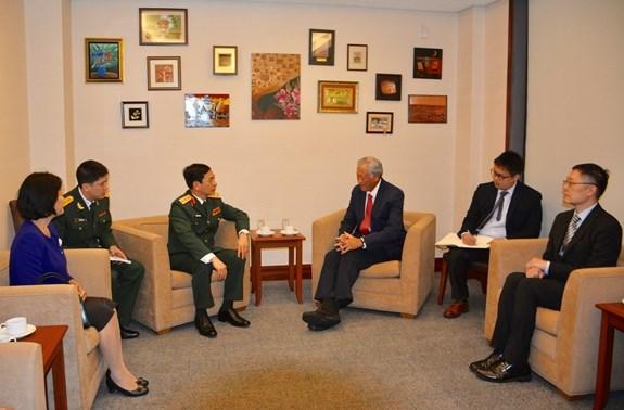 Vietnam, Singapore seek ways to foster defence ties hinh anh 1