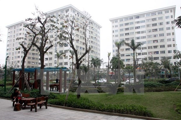 HCM City faces social housing shortage hinh anh 1