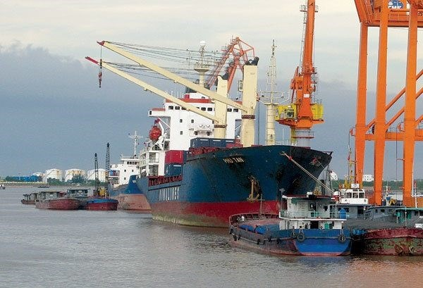New mechanisms to keep maritime transport sector afloat hinh anh 1