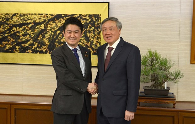 Vietnam, Japan supreme courts boost cooperation hinh anh 1