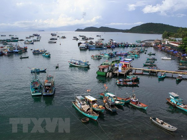 Tien Giang to develop sea-based economy hinh anh 1
