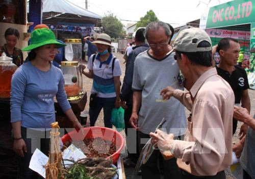 Coffee Trade Fair opens in Dak Lak province hinh anh 1