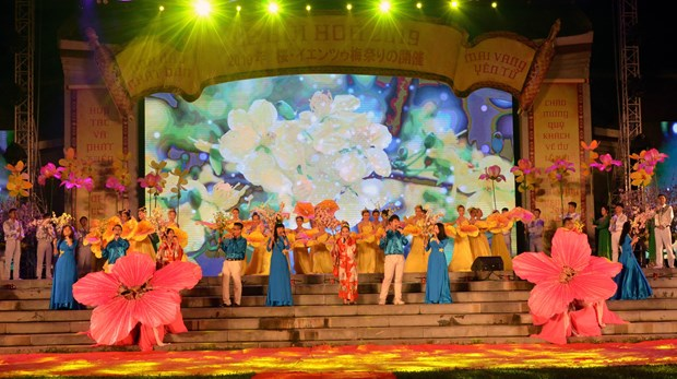 Cherry blossom festival opens in Quang Ninh hinh anh 1