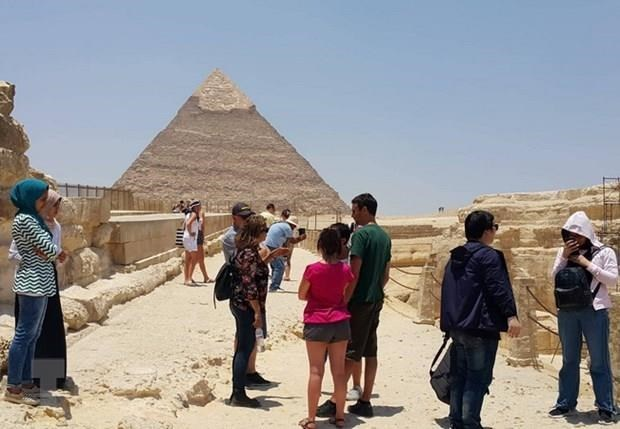 Warnings issued for Vietnamese tourists to Egypt, Taiwan hinh anh 1