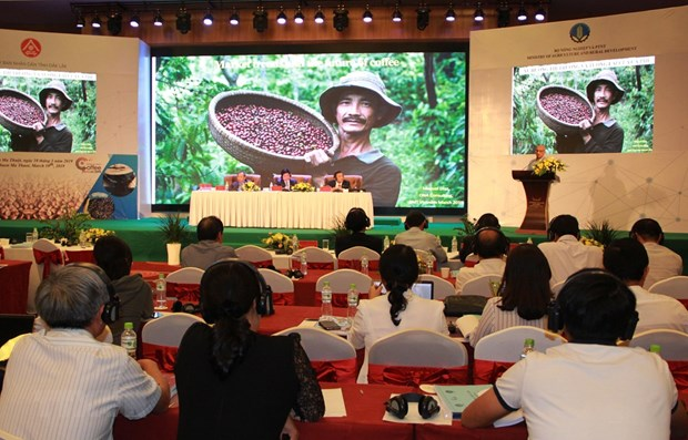 Vietnam has potential to produce speciality coffee hinh anh 1