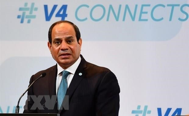 Cooperation with Vietnam to develop further: Egyptian President hinh anh 1