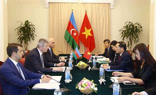 Vietnam, Azerbaijan foreign ministries hold political consultation hinh anh 1