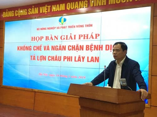 Solutions to curb African swine fever discussed hinh anh 1