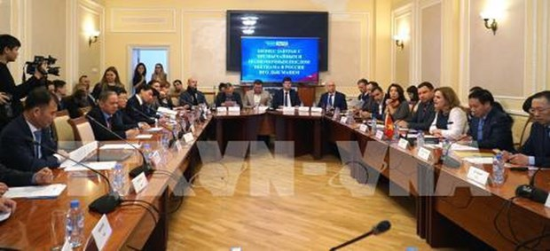 Vietnamese, Russian firms exchange cooperation opportunities hinh anh 1