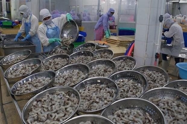 Vietnam aims to earn 4.2 billion USD from shrimp exports hinh anh 1