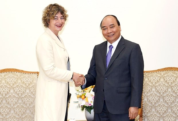 Netherlands - an important partner of Vietnam in Europe: PM hinh anh 1
