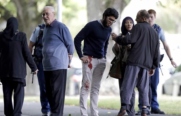 No Vietnamese victim in shooting attacks in New Zealand hinh anh 1