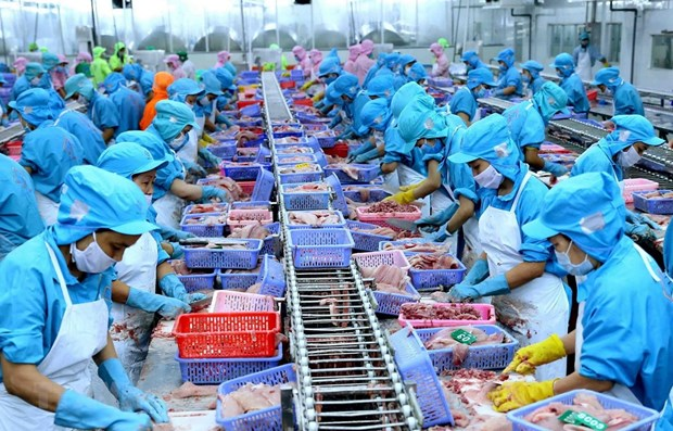 Vietnam world's fourth biggest seafood exporter hinh anh 1