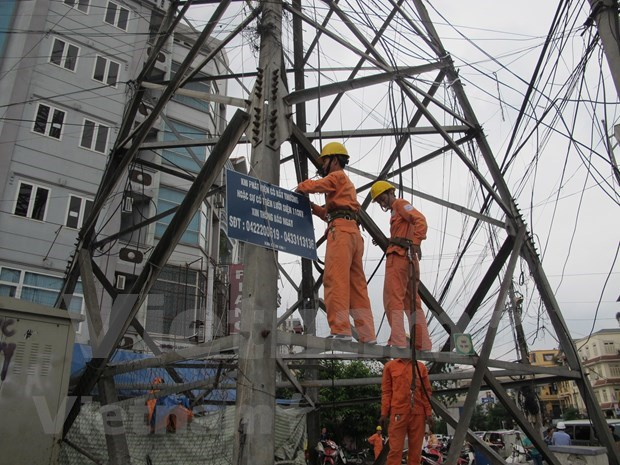 Power efficiency programme aims at 7 percent cut in consumption hinh anh 1