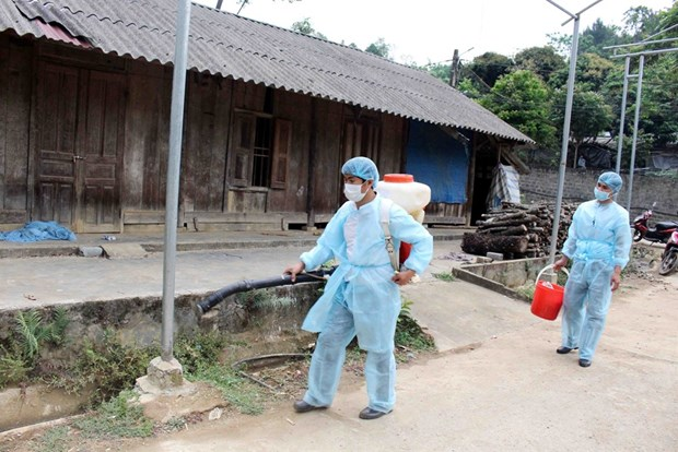 20 localities hit by African swine fever after Lai Chau outbreak hinh anh 1