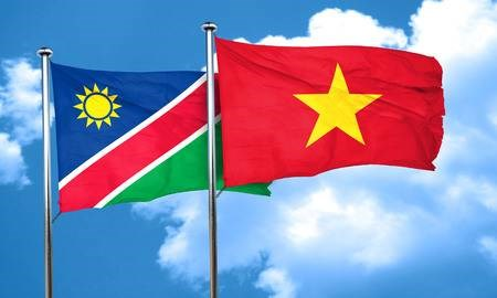 Vietnam congratulates Namibia on Independence Day hinh anh 1
