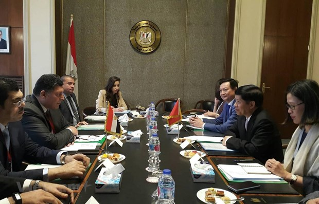 Egypt wants to develop ties with Vietnam hinh anh 1