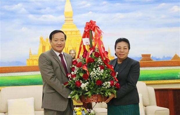 Vietnamese Ambassador congratulates Laos on Party founding anniversary hinh anh 1