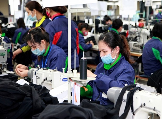 Seminar discusses labour productivity-competitiveness ties hinh anh 1